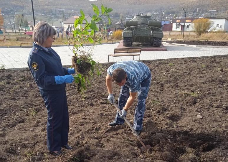 Сотрудники Забайкальского УФСИН посадили «Лес Победы»